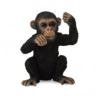 Фигурка Collecta Детеныш шимпанзе (S)