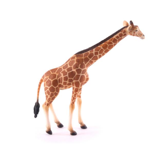 Фигурка Collecta Сетчатый жираф, XL