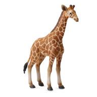 Фигурка Collecta Жеребенок Сетчатого Жирафа,L